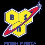 logo-bsn-565
