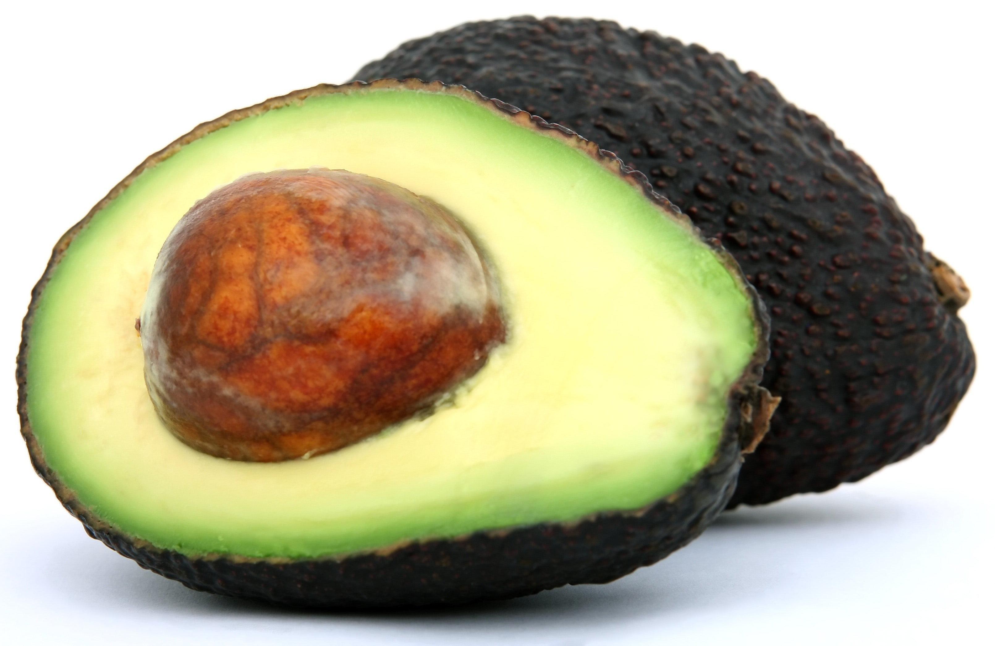 Advocado for Keto-Friendly Meal Replacement Shakes for Weight Loss
