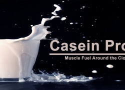 Casein Protein – All You Need To Know About Casein Protein Powder