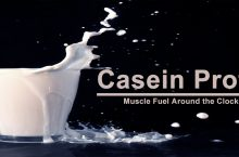 Casein Protein – All You Need To Know About Casein Protein Powder