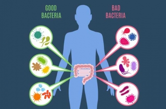 Probiotic With Lactobacillus Gasseri